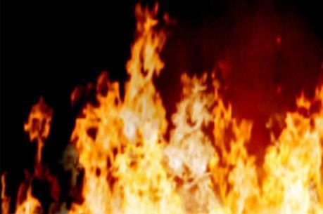 Cháy rừng lim trên 10 năm tuổi tại Quỳnh Lập, Nghệ An