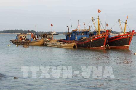 Bão số 10: Nghệ An cấm tất cả tàu thuyền ra khơi từ 7 giờ ngày 14/9