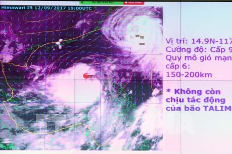 Bão số 10: Tàu thuyền ở Thừa Thiên-Huế vào nơi tránh bão trước 12h ngày 14/9