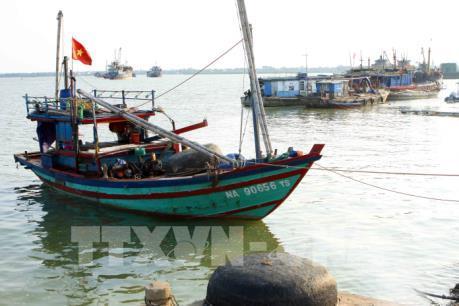 Ứng phó với cơn bão số 10 tại Thái Bình