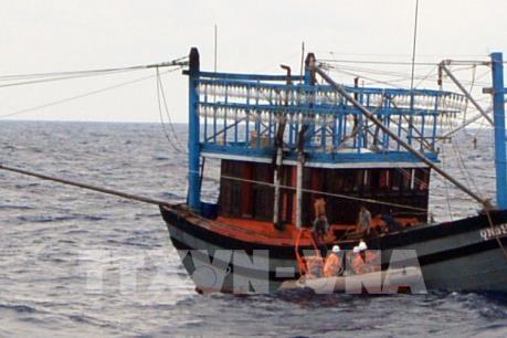 Cứu hộ thành công 7 thuyền viên bị chìm tàu trên biển Cà Mau