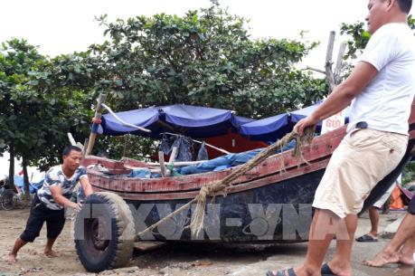 Ứng phó với bão số 10 tại Thanh Hóa