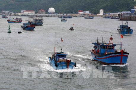 Cứu 11 thuyền viên gặp nạn trên biển khi đi tránh bão số 10