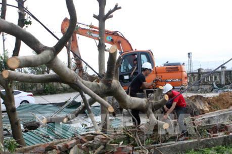 Hướng dẫn người dân phòng chống dịch bệnh sau bão số 10