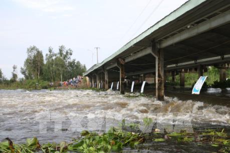 Cảnh báo đợt lũ mới trên các sông từ ngày 16/10 và nguy cơ lũ quét tại một số tỉnh
