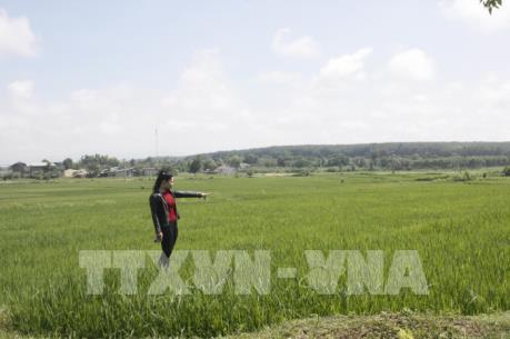 """Kon Tum giải quyết tình trạng một khu đất bị """"xé"""" thành nhiều """"sổ đỏ"""""""
