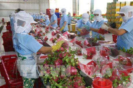 Việt Nam-New Zealand hướng tới thương mại hai chiều 1,7 tỷ USD vào năm 2020