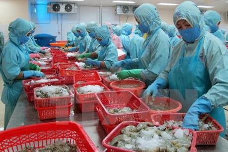 Kim ngạch xuất khẩu tôm, cá vào Mỹ sụt giảm mạnh