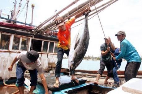 """Việt Nam tích cực khắc phục """"thẻ vàng"""" của EC đối với khai thác thủy sản"""