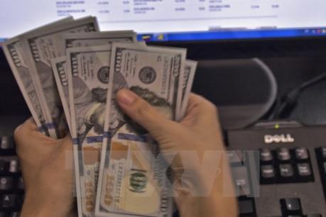 Xu hướng tích trữ tiền mặt và tài sản có tính thanh khoản cao