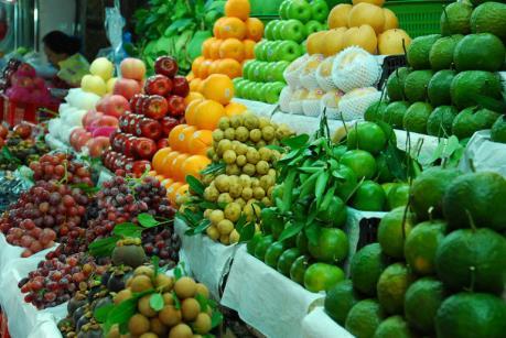 Hà Nội thúc đẩy tiếp cận mô hình kinh doanh trái cây hiện đại