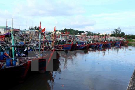 Quảng Ninh khẩn trương thực hiện các biện pháp phòng, chống bão số 11