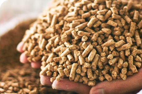 Bán thức ăn chăn nuôi giả, 3 chủ đại lý bị phạt 150 triệu đồng