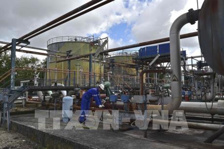 Thị trường dầu chờ tin từ cuộc họp của OPEC