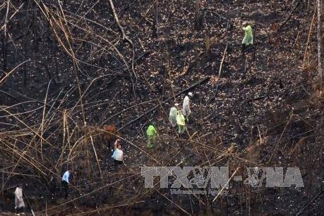 UBND tỉnh Đắk Nông yêu cầu nâng mức kỷ luật đối với các cán bộ kiểm lâm làm mất rừng