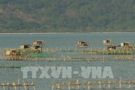 Đột phá kinh tế từ chăn nuôi thủy sản theo hướng an toàn sinh học