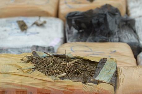 Phát hiện hơn 13 kg thảo mộc nghi cần sa vận chuyển qua đường hàng không