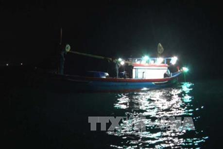 Khẩn trương tìm kiếm nạn nhân mất tích trong vụ chìm tàu tại khu vực đảo Trần Nhạn