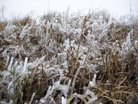 Dự báo thời tiết hôm nay 25/11: Miền Bắc xuất hiện băng giá, nhiệt độ có nơi -2 độ C