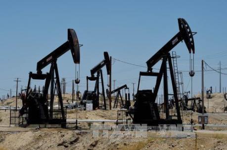 Giá dầu châu Á vẫn neo gần mức cao nhất trong hai tuần qua