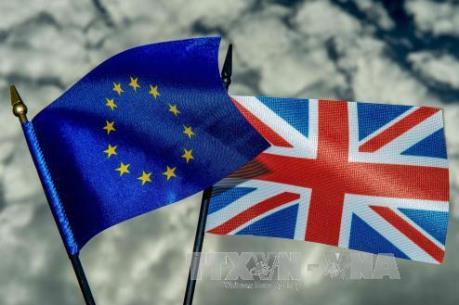 Vấn đề Brexit: Ngày càng nhiều người Anh hoài nghi cách đàm phán của chính phủ