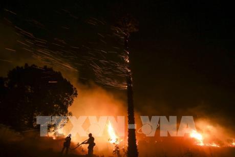 Cháy rừng tại Nam California, Mỹ tiếp tục diễn biễn phức tạp