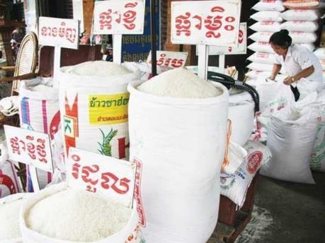 Campuchia xuất khẩu gạo tăng 17%