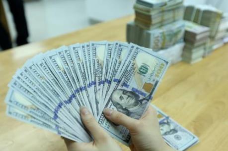 Hạn chế tình trạng đô-la hóa, nâng cao vị thế của đồng tiền Việt Nam
