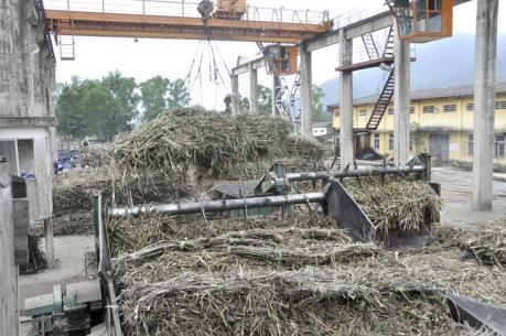 Đã có kết luận về điều kiện hoạt động của Nhà máy đường thuộc Bisuco