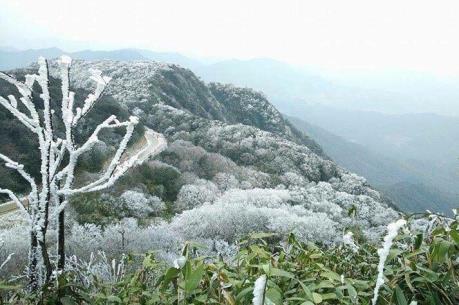 Khu vực đỉnh núi Mẫu Sơn nhiệt độ giảm xuống dưới 0 độ C