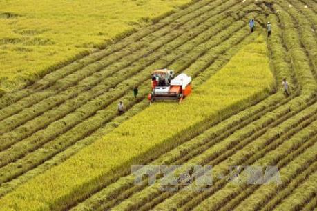 Ngành nông nghiệp hướng tới mục tiêu kim ngạch xuất khẩu đạt 40 tỷ USD trong năm 2018