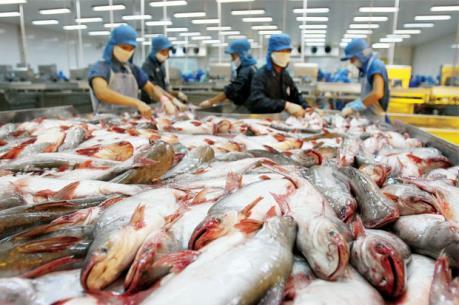 Khiếu nại về biện pháp chống bán phá giá của Hoa Kỳ đối với sản phẩm cá tra, basa