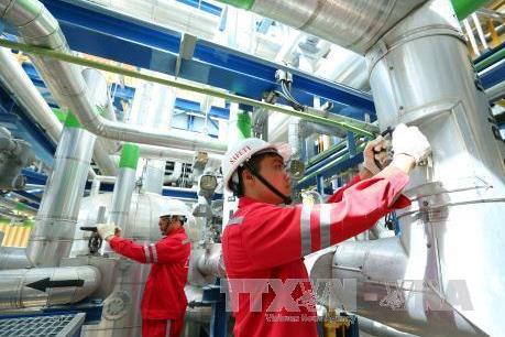 IPO hơn 468 triệu cổ phần Công ty mẹ -Tổng công ty Điện lực Dầu khí Việt Nam