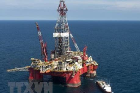 Thị trường dầu mỏ tiếp tục biến động nhẹ