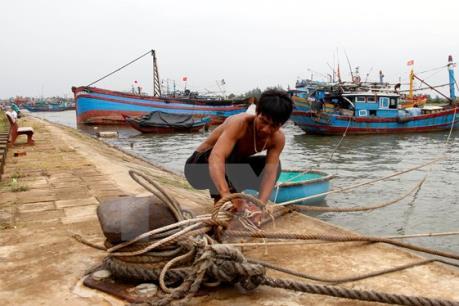 Các tỉnh, thành phố từ Đà Nẵng đến Kiên Giang chủ động ứng phó với bão Sanba