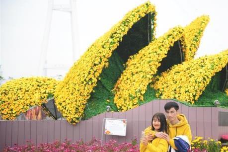 Valentine không đến Lễ hội Kỳ quan muôn sắc hoa Hạ Long thì quá phí