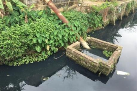 Hệ thống thủy lợi Bắc Hưng Hải bị ô nhiễm trầm trọng