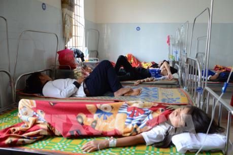 Vụ hơn 70 học sinh nhập viện nghi ngộ độc thực phẩm: Đồng Nai tạm dừng Đề án Sữa học đường