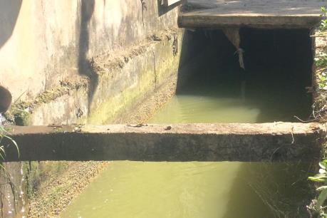 Hải Phòng: Rơi xuống mương nước, 2 trẻ em tử vong
