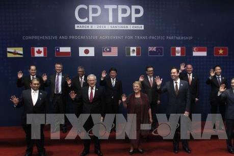 Nhật Bản đi tiên phong trong thúc đẩy phê chuẩn CPTPP