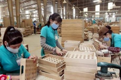 Việt Nam mới chiếm 6% thị phần thế giới về gỗ và sản phẩm gỗ