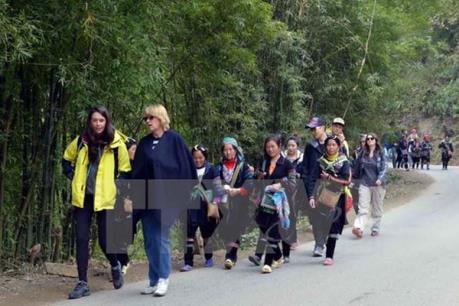 Bắt được đối tượng phá hoại tài sản người dân và khách du lịch tại Sa Pa