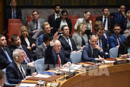 HĐBA LHQ không thông qua dự thảo nghị quyết lên án các cuộc tấn công Syria