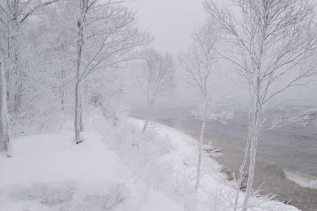 Bão tuyết hoành hành miền Trung nước Mỹ