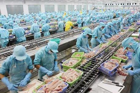 Gỡ thẻ vàng cho thủy sản Việt Nam: Bài học từ các nước bạn