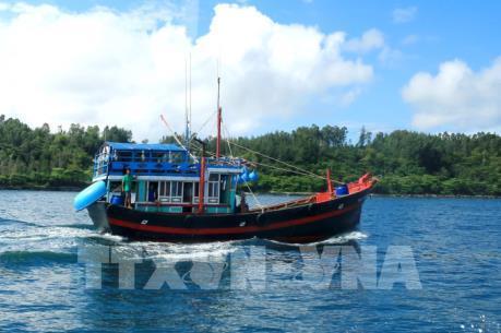 Việt Nam khẳng định quyết tâm chống đánh bắt cá trái phép