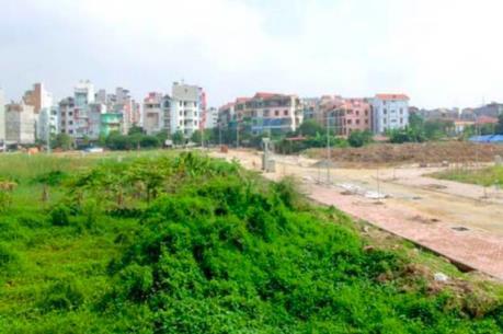 Tồn đọng 50 dự án chậm triển khai, vi phạm Luật Đất đai tại huyện Mê Linh, Hà Nội