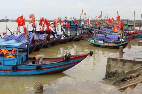 Quảng Bình vươn lên mạnh mẽ sau sự cố môi trường biển