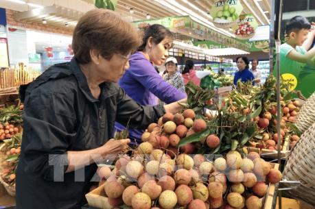 Saigon Co.op cam kết bao tiêu trái vải thiều tươi Lục Ngạn và Thanh Hà