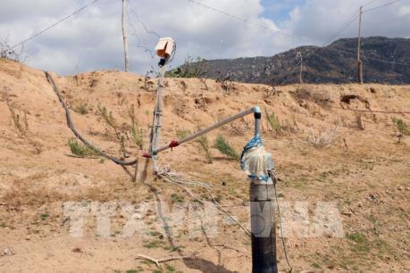 Chống hạn, thiếu nước vụ Hè Thu, Mùa ở khu vực Trung bộ